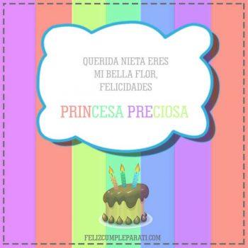 frases de feliz cumpleanos para mi nieta princesa