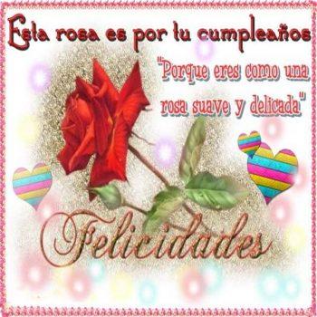 imagenes con frases de feliz cumpleanos con rosas delicada